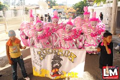 Tour Carnaval Vegano 2013