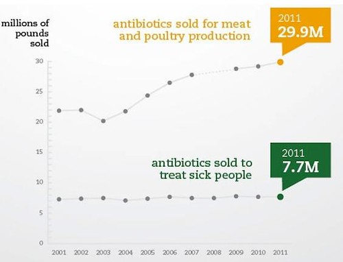Meat Industry Now Consumes Four Fifth All Antibiotics