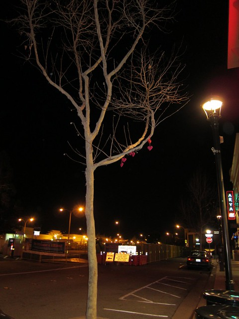 Valentine Yarn Bomb - 2013 - the tree