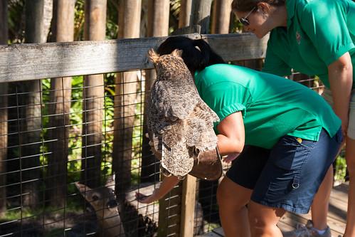 Brevard Zoo Visit