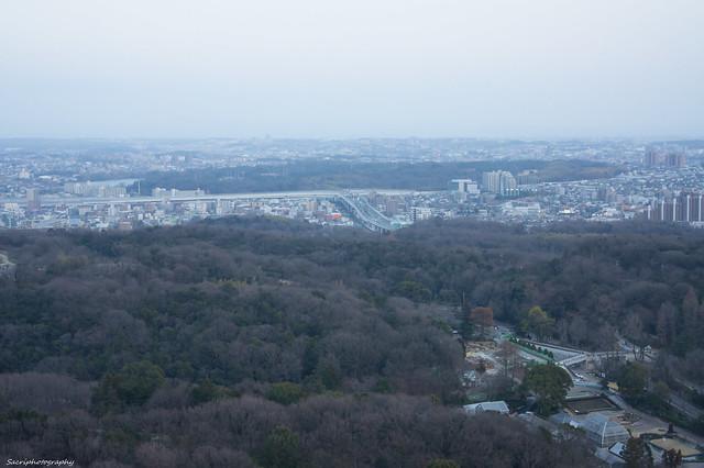 東山スカイタワー #03