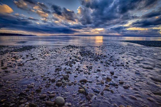 Hidden Treasure, Picnic Point County Park, Washington