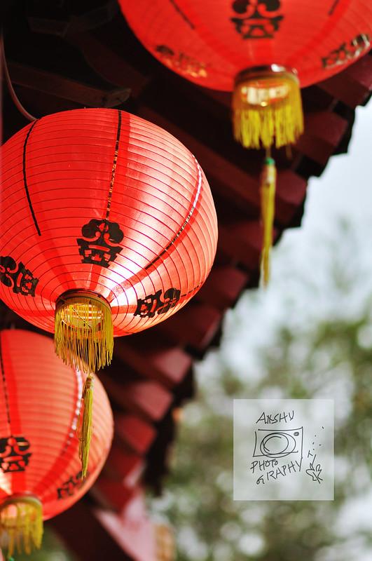 Day 59.365 - Chinese Garden