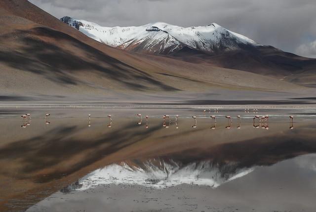 Espejos de agua, altiplano boliviano