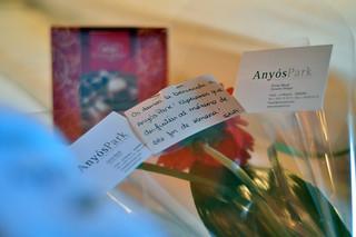 Flores y bombones de bienvenida a Anyós Park Andorra, #experiencia mucho más que nieve - 8579918149 0179192a9c n - Andorra, #experiencia mucho más que nieve