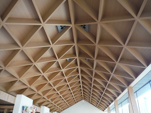 Ceiling of Reading Room, Windmill Hill Archive, Waddesdon Estate