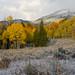 First Snow by Brent La Fleur