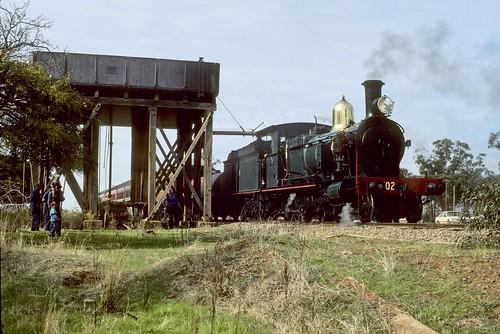 3102 at Tallimba, 7th June, 1986.