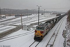 NS 590