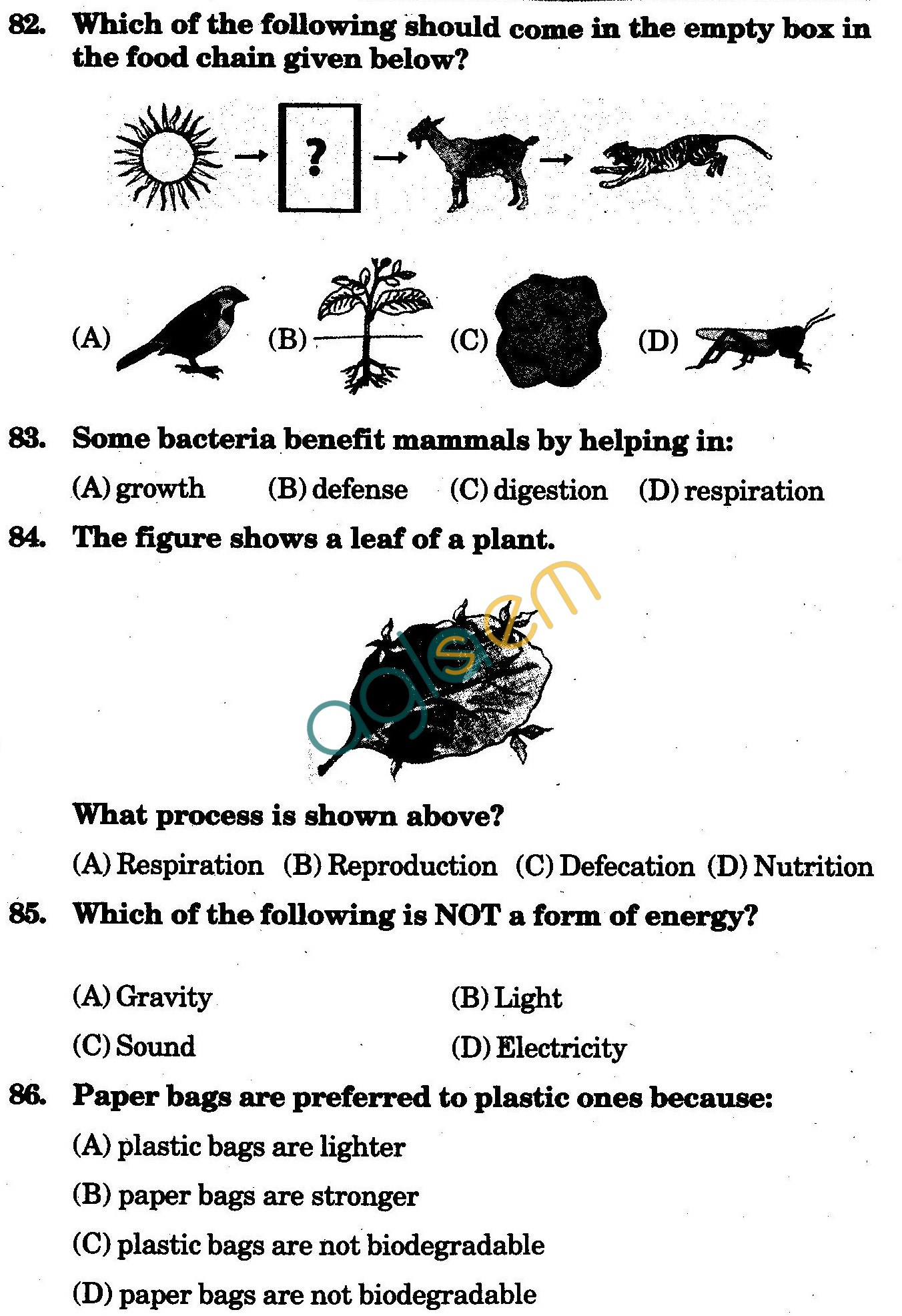 NSTSE 2009 Class V Question Paper with Answers - Science