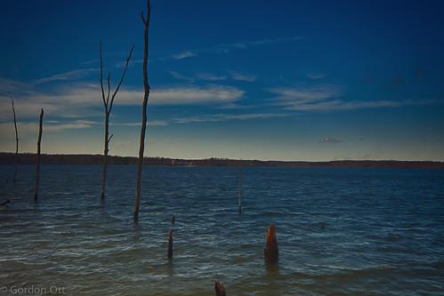 trees sky water landscape manasqaunreservoir