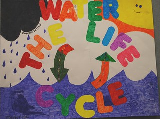 Water: The Life Cycle