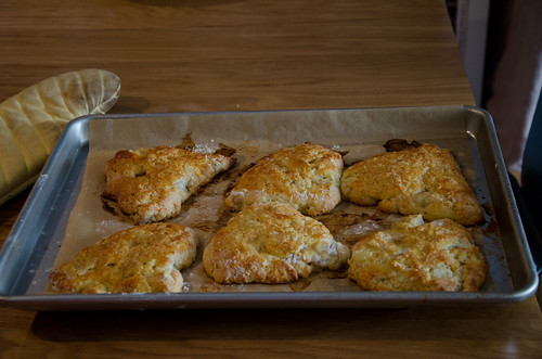 roasted pear and cheddar scones