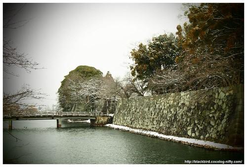 Snow day #03
