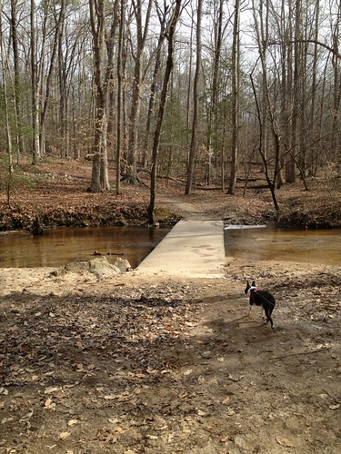 Charlie's First Trip to Poco Feb 2013 (57)