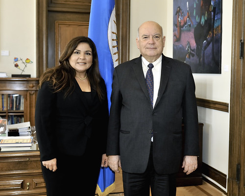 OAS Secretary General Meets with Director for Latin America at the World Economic Forum