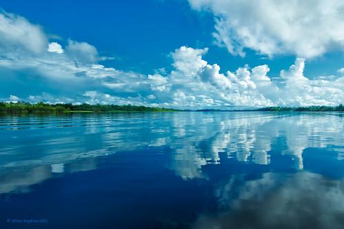 southamerica rio river landscape amazon paisaje paisagem guyana amazonia amazonie demerara westbankdemerara guiana justclouds arrowpointnatureresort allanhopkins hoppy1951
