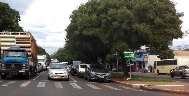 Avenida Colombo