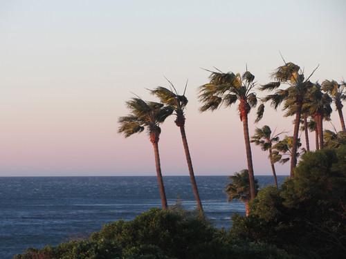 santana winds