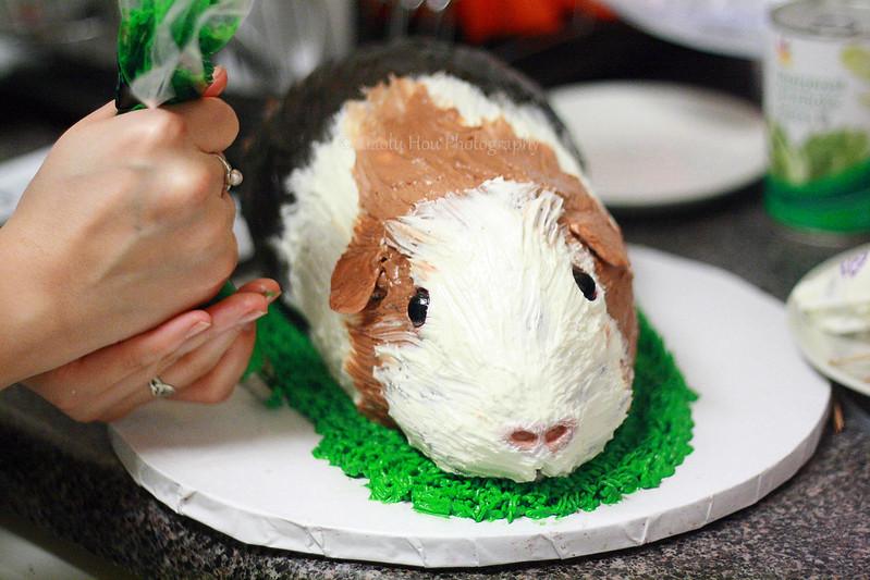 Guinea Pig Cake Process