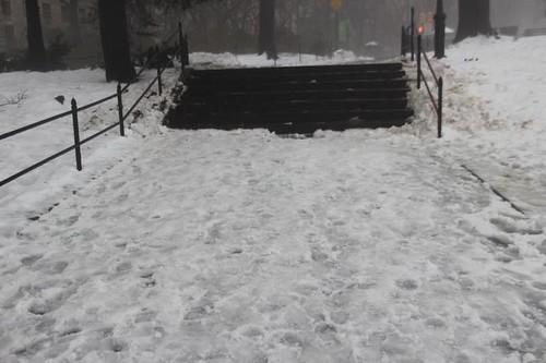 Central Park Nemo Blizzard