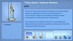 Them Bones Anatomy Skeleton