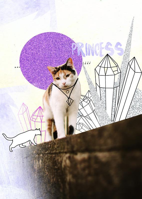 Princess the Cat