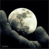 La luna en mi mano