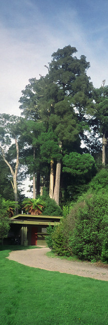 house_19930331_NZ06_010.jpg