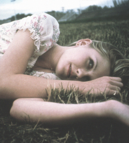 tues virgin suicides