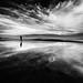 Reflections of Passion by Sairam Sundaresan