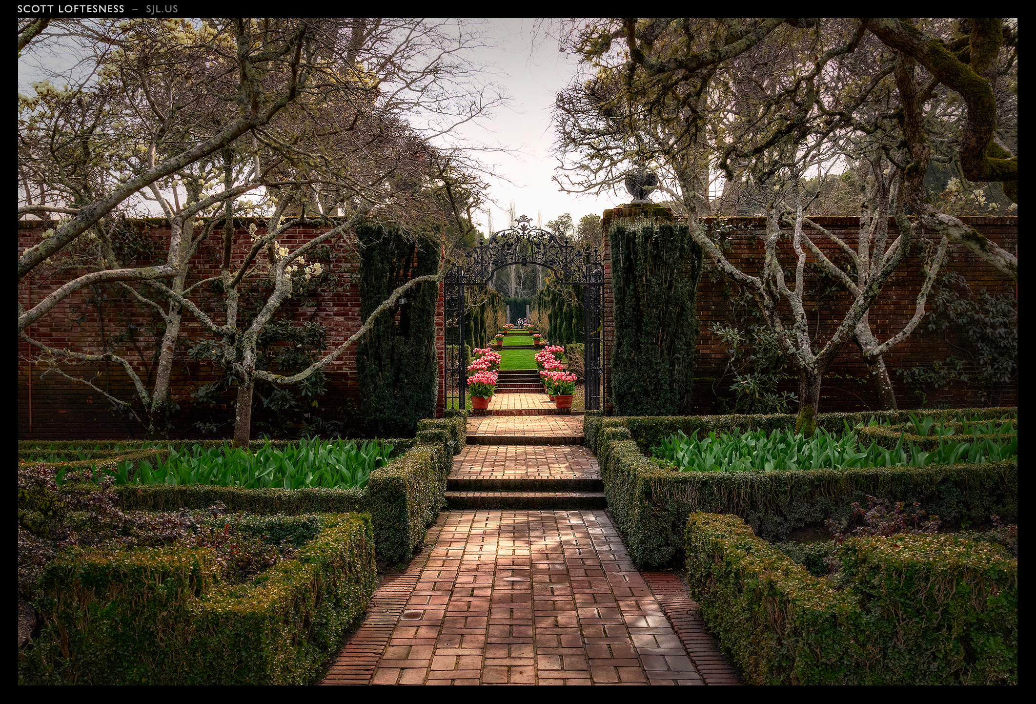 Garden Walk - Filoli - 2013 by Scott Loftesness