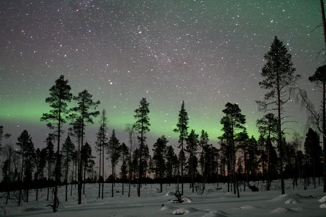 Un cielo estrellado y auroras