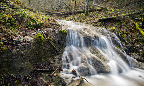 water colors forest canon eos switzerland waterfall moss exposure winterthur canonphotography canon5dmarkiii