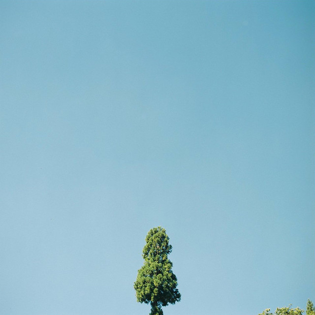 2013.1.8- Untitled -