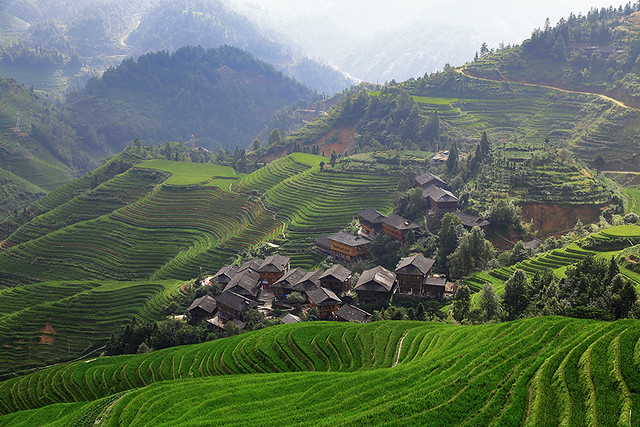 Walking along the Longji rice terraces in Dazhai, China.
