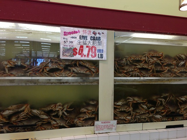 Live dungeness crab @ $4.79/lb.