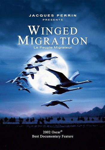 迁徙的鸟 Le peuple migrateur(2001)