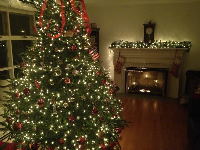 Emily & Brian's Tree