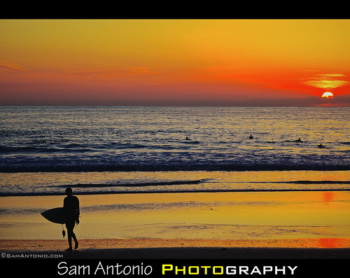 "The Beach Boys ""Surfin' USA"" by Sam Antonio Photography"