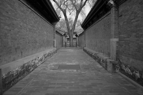 Walls and Tree