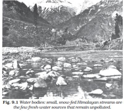NCERT Class XI Economics Chapter 9 – Environment and Sustainable Development