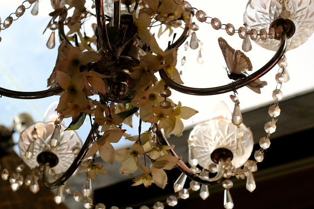 Wednesday: Waitangi Day. A chandelier at birthday drinks for lovely Megan