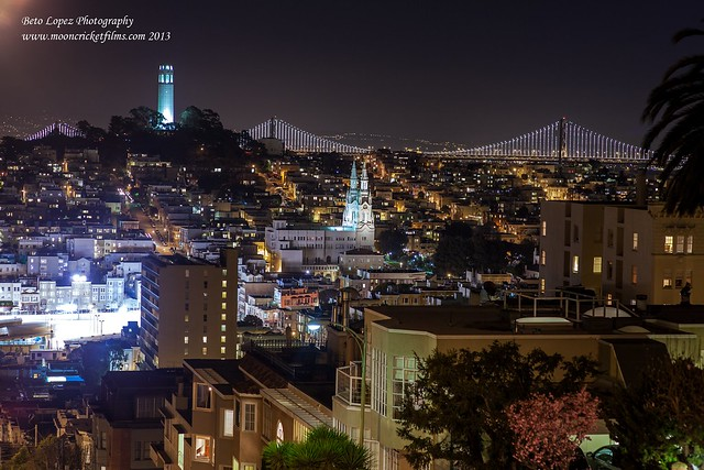 baylights5 (1 of 1)