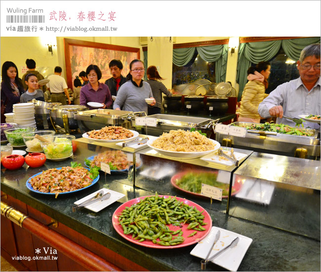 【武陵國民賓館】via賞櫻記(4)武陵國民賓館住宿篇~房型+早晚餐