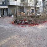Le nouvel an chinois ou « j'ai survécu à Beyrouth »
