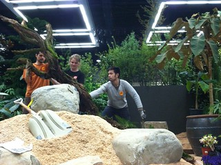 NWFGS 2013 Lost Gardener Nurse log placement