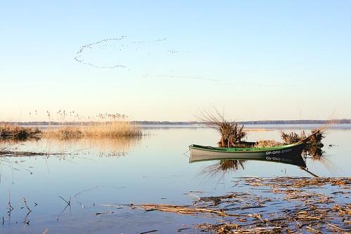 sunset lake reflection wet water birds lens lumix boat spring day poland polska panasonic formation clear rush pancake 20mm woda zachód łódka jezioro vformation klucz sitowie szuwary ptaków turawa turawskie odbice niwki formacja dmcgf1