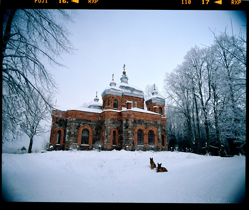 winter snow cold 120 film ice dogs church wet weather architecture analog estonia pentax drum shepherd snowy religion tube freezing slide dia baltic scan christian mount german lee roll medium format chilly positive analogue 6x7 orthodox 3000 e6 冬 f4 67 45mm kami baltics kirik archtecture eesti talv it8 drumscan зима 爱沙尼亚 gnd pmt ثلج calibrated 冬季 شتاء بارد heliopan эстония エストニア جليد õigeusu scanview scanmate shpmc photomultiplier استونيا ilmjärve slx2001 ilmjärv õigeusk