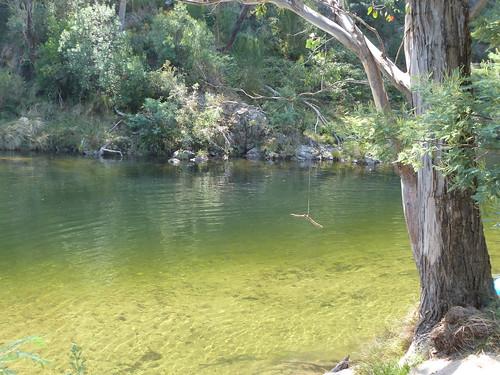 Natural Swimming Pool Gallery By Riverwater Pools Albury Wodonga